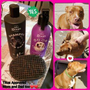Sirius Dog Shampoo Avon